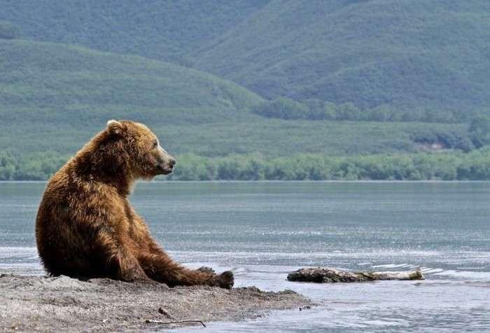 Кращі фотографії мандрівників за 2015-й рік від журналу National Geographic (33 фото)