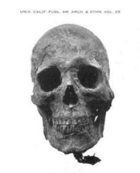 Легенды о Саидуках — рыжеволосых людоедов-гигантов Интересное
