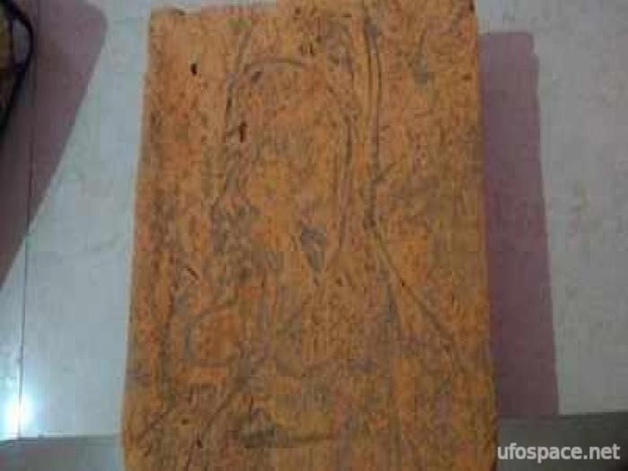 В Индии археологов выгнали с раскопок после обнаружения древнего рисунка «бородатого иностранца» Интересное