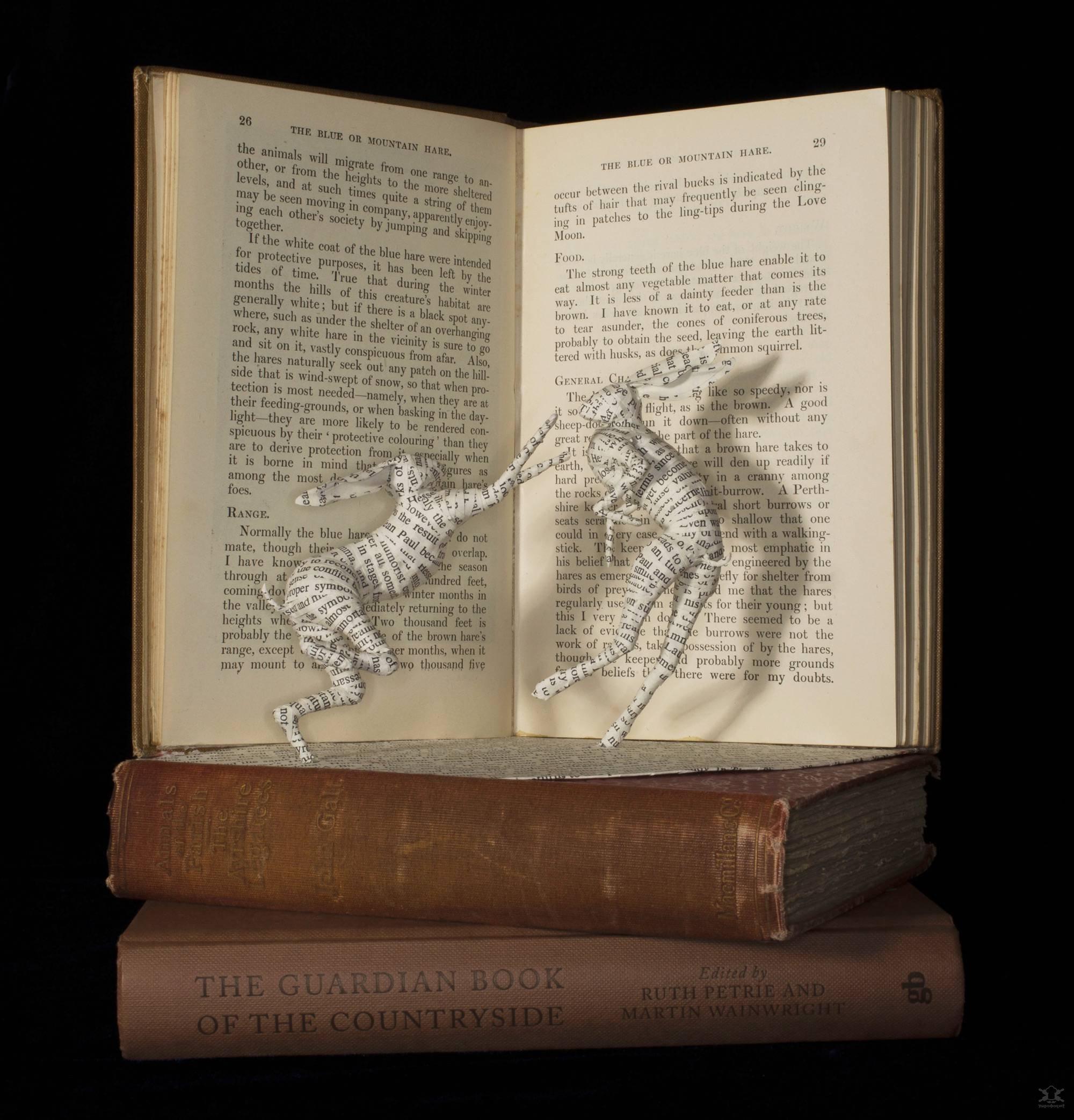 Трёхмерные бумажные композиции из старых книг Интересное