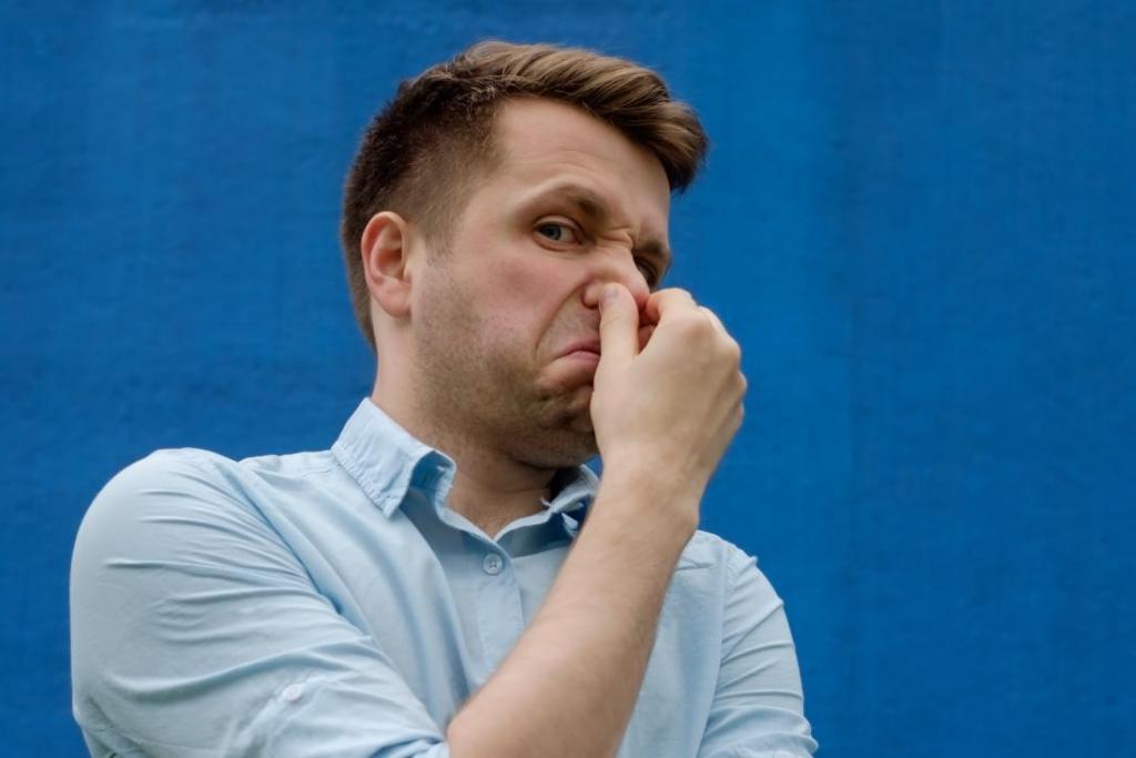 Неприятные запахи делают воспоминания ярче: ученые доказали, что обоняние участвует в процессах запоминания Интересное