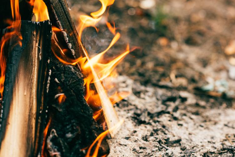 Лесные пожары. Какие они бывают? лес,лесной массив,лесные пожары,пожар,Россия