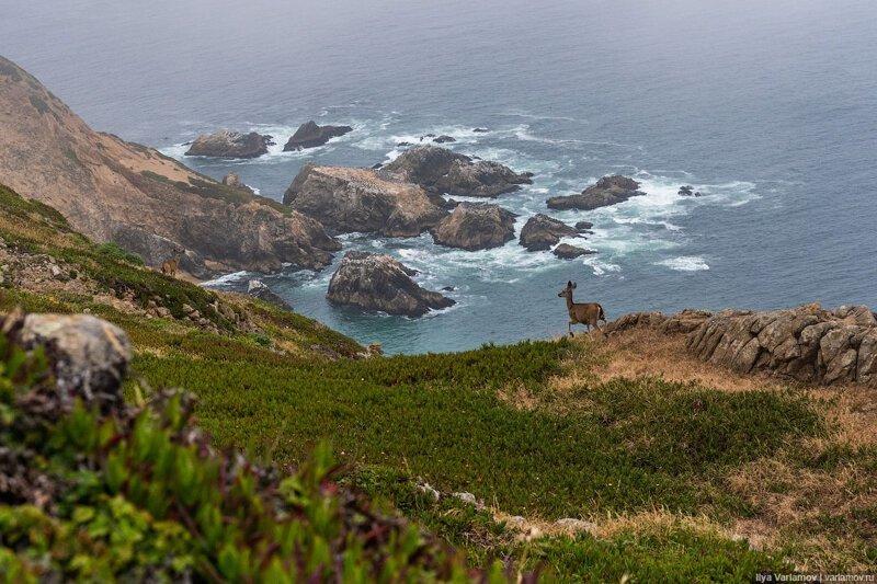 Как американцы любят природу. Путевые заметки заграница,поездка,путешествие,страны,туризм