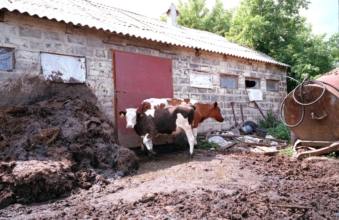 «Территория вечного счастья без водопровода». Как под Харьковом живет коммуна любителей всего советского коммуна,община «Спарта»