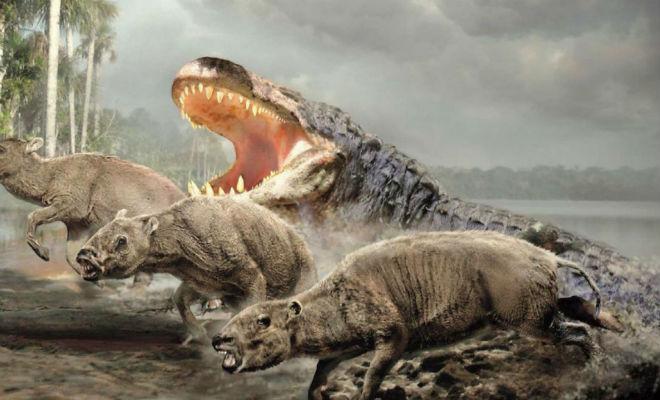 Самый огромный крокодил в истории планеты весил несколько тонн и мог охотиться на слонов археология,динозавр,крокодил,палеонтология,Пространство