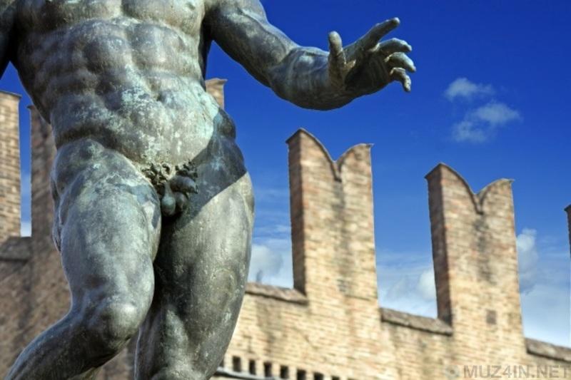10 забавных, но ложных теорий о пенисе мифы и факты,пенис