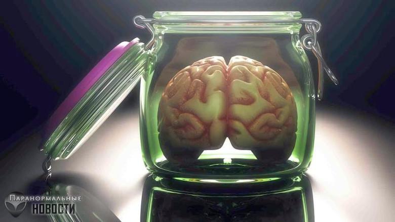 «Уверяем вас, оно не думает»: Ученые вырастили мини-мозг и наблюдали у него активность нейронов Тайны и мифы